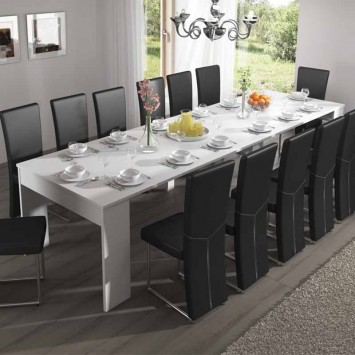 Table extensible 14 personnes
